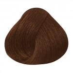 Gyptis 8/70 Blond Clair Marron Intense