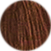 Gyptis 6/31 Blond Fonce Dore Cendre